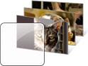 Förhandsvisning katter